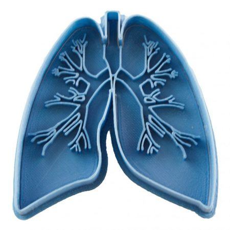 real lung cookie cutter